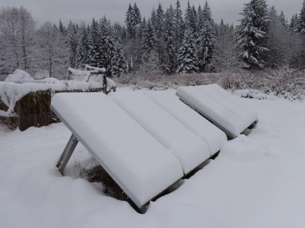 storm of Feb. 3-4, 2017 008.JPG